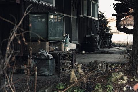 PAK85_bukiminanokisaki20140102500.jpg